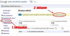 Google +1 Metrikleri