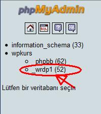 database seç