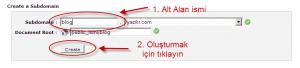Sub Domain oluşturma