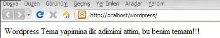 WordPress Tema Yapımı sayfa görünümü
