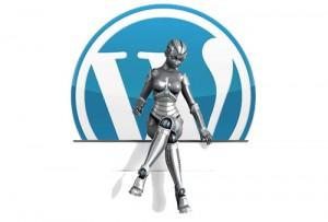 Wordpress Eklenti